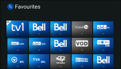 The channels have been set as favourites when you see a heart icon at the top left corner.