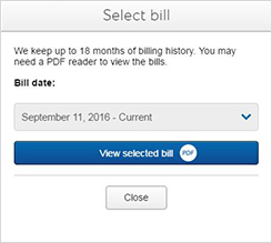 View your bill